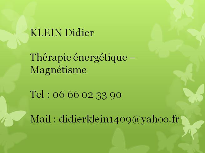 Carte De Visite Didier Klein